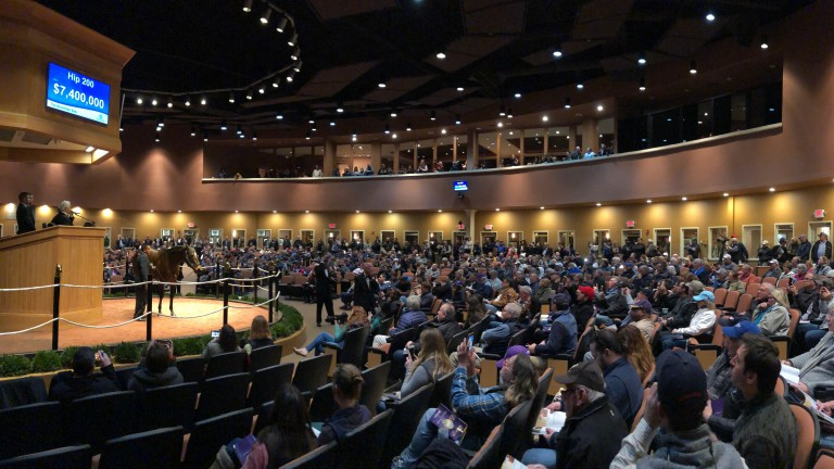 A packed Fasig-Tipton sales ring looks on as Lady Aurelia sells for $7.5 million