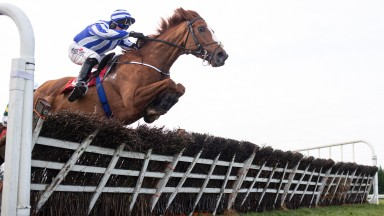 Cerberus and Robbie Power jumps the last when winning the baroneracing.com Juvenile Hurdle (Grade 3) FairyhousePhoto: Patrick McCann/Racing Post 01.12.2019