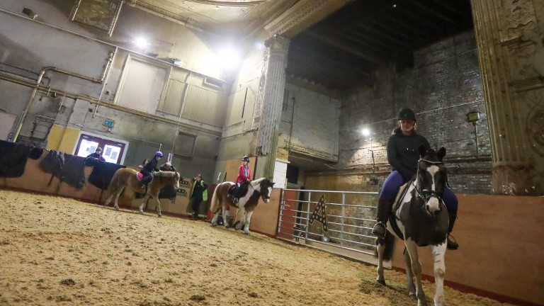 Students in action at Park Palace Ponies