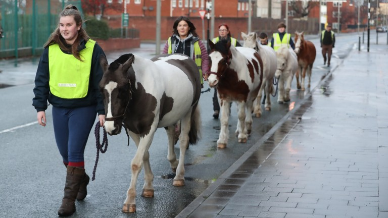 Staff and ponies make the familiar journey along the main road