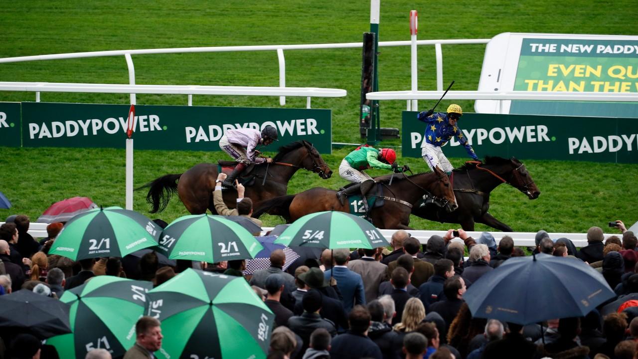 Paddy power horse racing betting for dummies freak a zoid csgo reddit betting