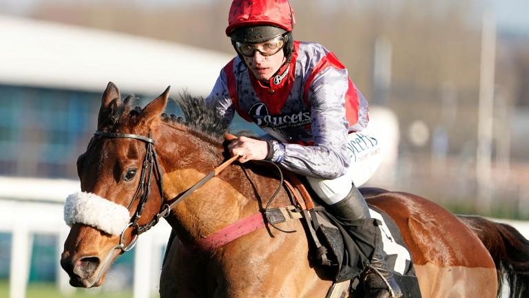 Fanion D'Estruval: won impressively under Charlie Deutsch at Newbury last autumn