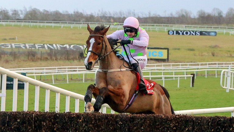 Faugheen: defeated Samcro at Limerick
