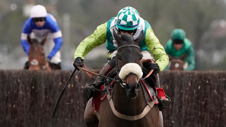Clan Des Obeaux: will head straight to the Gold Cup