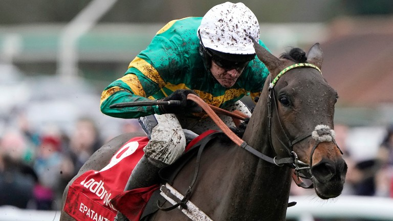 Epatante: a general 4-1 chance for the Champion Hurdle following her Kempton success