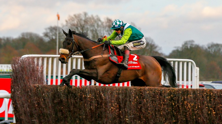 Clan Des Obeaux: working well ahead of the Gold Cup