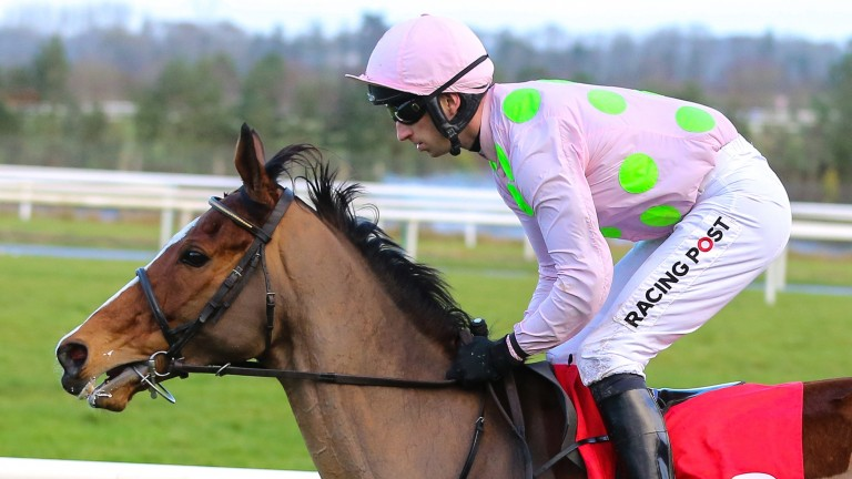 Faugheen: 12-year-old will be bidding for 11th Grade 1 victory