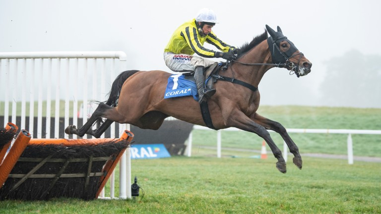 Allmankind: was a Grade 1 winner last term before finishing third at the Cheltenham Festival