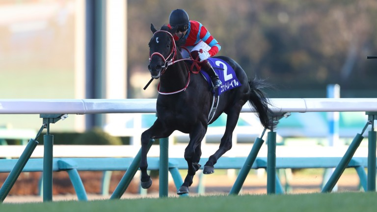 Contrail looked a monster at two and could become one of the stars of the Japanese spring