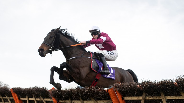 """Gordon Elliott on Apple's Jade: """"I know she won well at Leopardstown but I still don't think she's the same mare we saw this time last year."""""""
