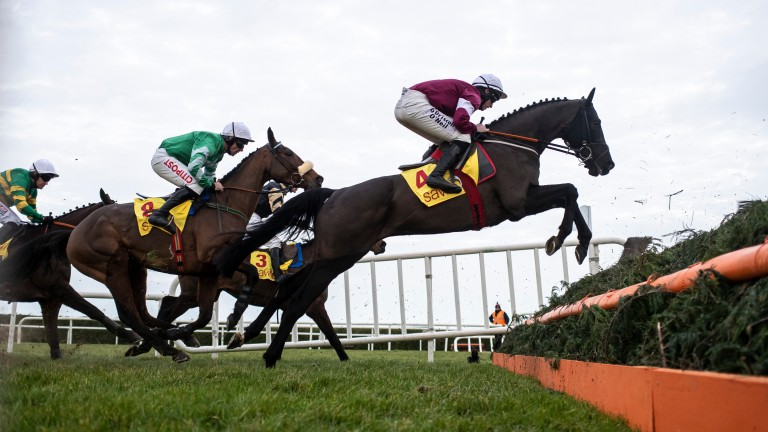Delta Work: has genuine Gold Cup claims after Savills Chase win
