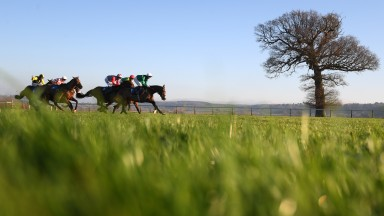 Runners out on the track at Taunton during the 2m7f handicap chase