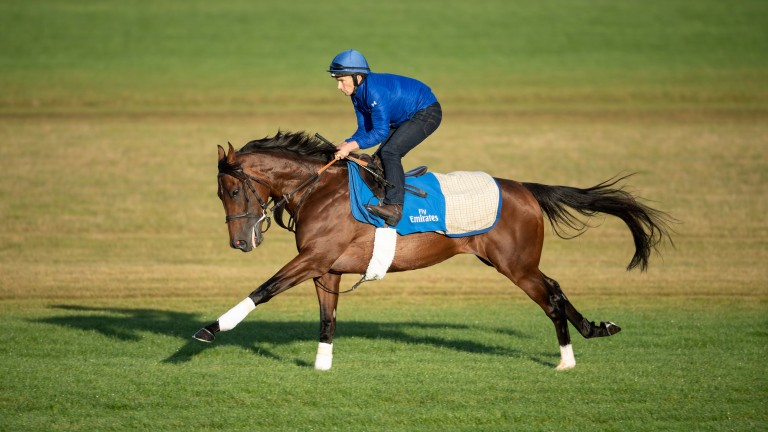 Ghaiyyath: the favourite for an intriguing Coronation Cup, held at Newmarket rather than Epsom