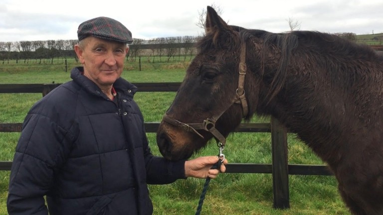 Frank Motherway of Yellowford Farm together with Hurricane Fly's dam Scandisk