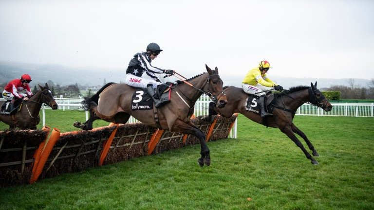 Protektorat (far side): Ballymore Novices' Hurdle and Coral Cup are under consideration