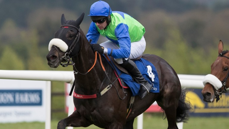 Canardier: failed to fire on his latest start over fences at Leopardstown
