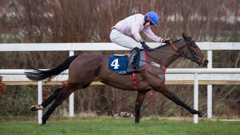 Santa Rossa: looked a bright prospect when winning her first two bumper starts
