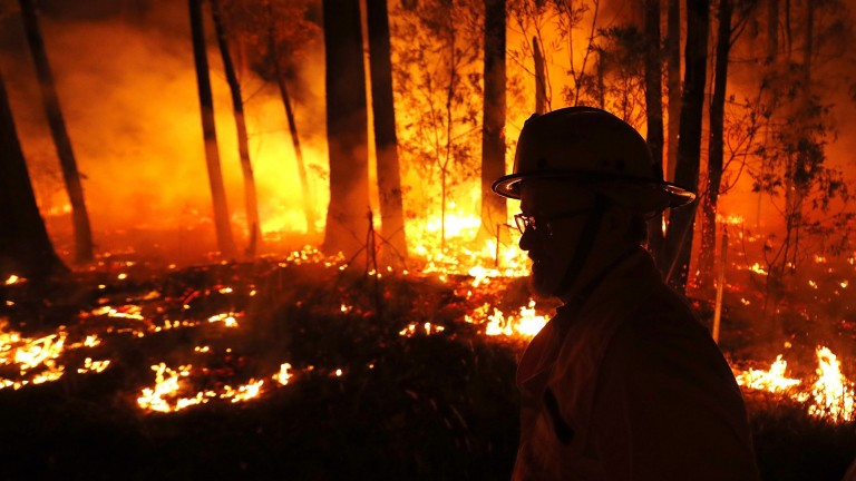 Bushfires have wreaked havoc throughout Australia