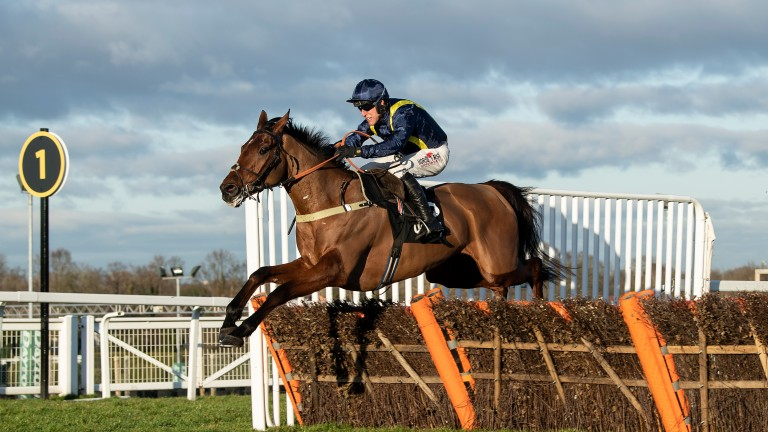 Fiddlerontheroof clears the final flight to win the Tolworth Novices' Hurdle at Sandown