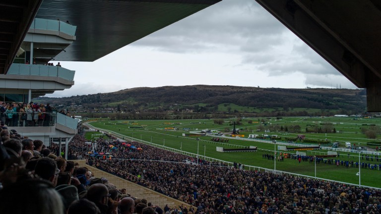 Cheltenham Festival: nearly £400 million estimate to be bet during the week
