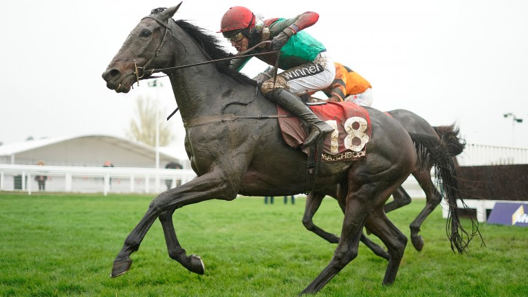 The Conditional could bid to go one better in the Ladbrokes Trophy