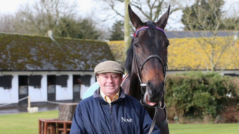 Nicky Henderson: hoping Flinteur Sacre can emulate his brother Sprinter Sacre (pictured)