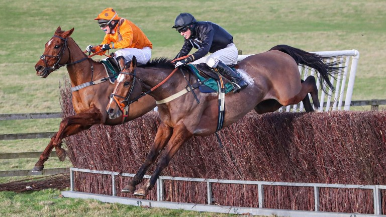 Don Poli (black clap): returns to racing under rules after a season in point-to-points