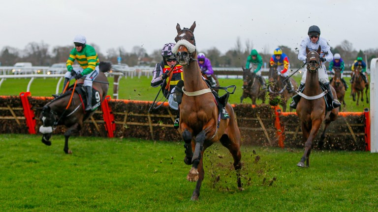 Notre Pari (left) crashes out of the Lanzarote Hurdle at the last