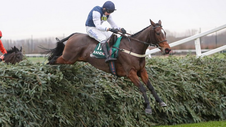 Aintree specialist Walk In The Mill is reported to be fine since his uncharacteristic mishap at the track last month