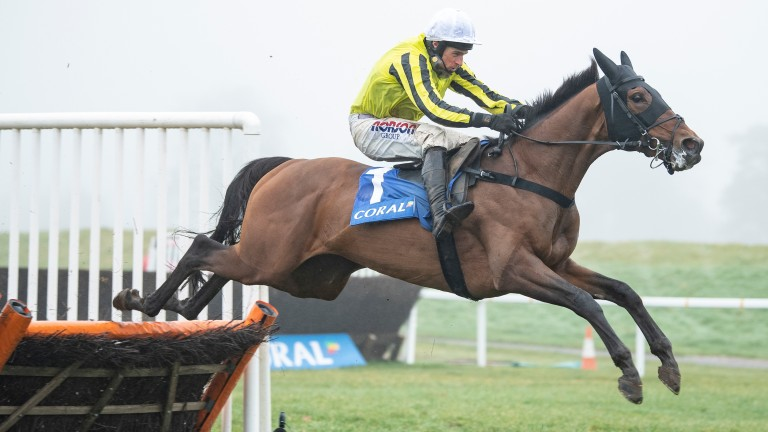 Allmankind: won the Grade 1 Coral Finale Juvenile Hurdle at Chepstow in December