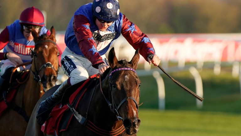 Paisley Park powered clear to win the Long Distance Hurdle last year