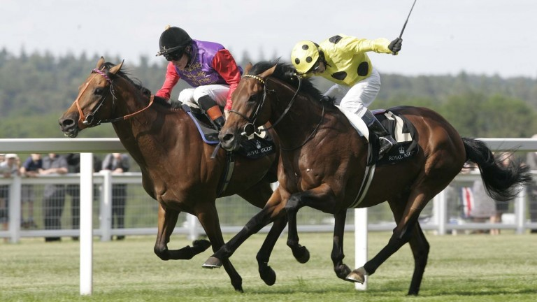 Quadrille (far side) is just denied by Afsare at Royal Ascot in 2010