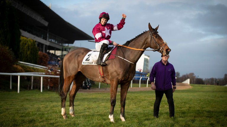 Notebook: will bid for the Racing Post Arkle at Cheltenham