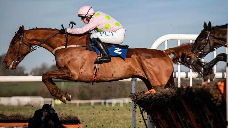 Monkfish: exhilarating winner of the RSA Chase in March makes his chase debut at Fairyhouse