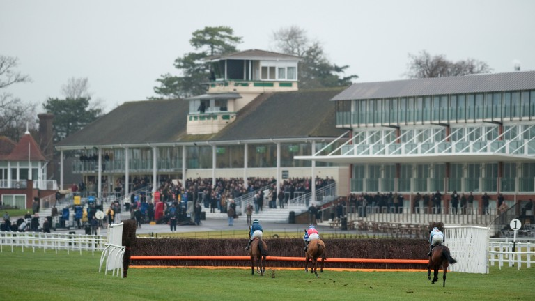 Welfare is a hot topic in horseracing