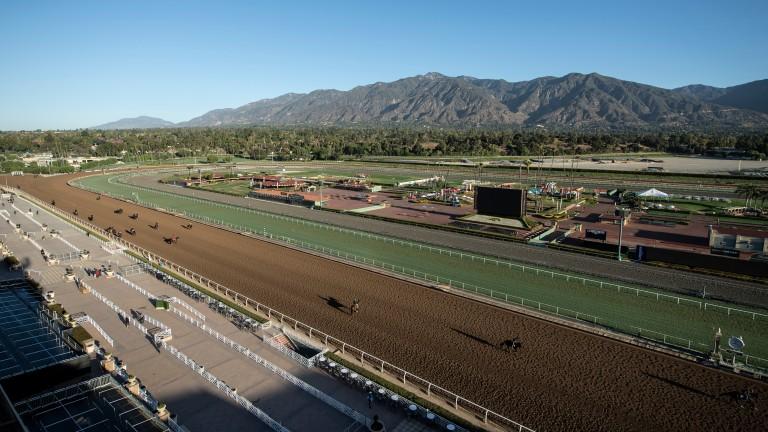 Horses train on Santa Anita's main track against the backdrop of the San Gabriel mountains
