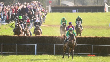 The Bees Knees (leading): jumps the last fence to strike in the geldings' maiden at Ballycrystal