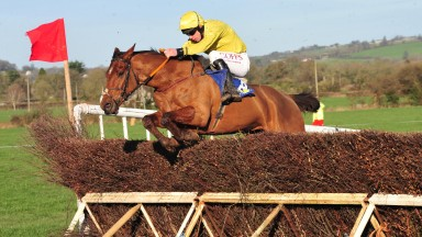 A Distant Place: a six-length winner of the five-year-old geldings' maiden at Carrigarostig