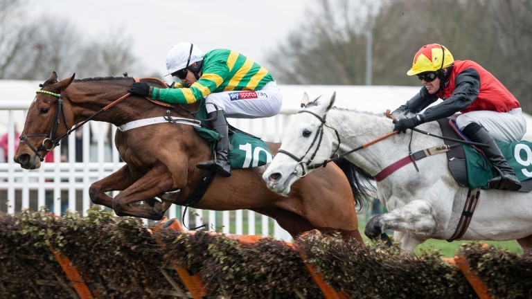 Laskadine (Barry Geraghty) leads over the final flight from The Crooner (9) in the 2m juvenile hurdleWarwick 21.1.19 Pic: Edward Whitaker