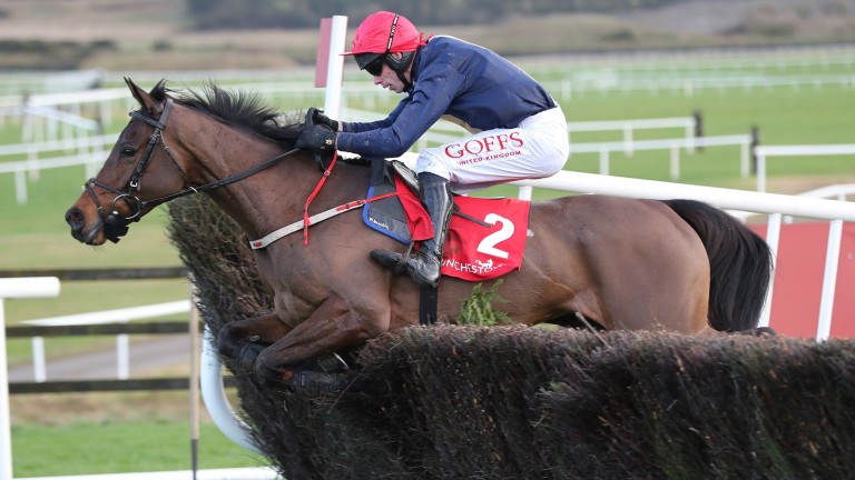 City Island has had two starts over fences this season but will now revert to hurdles