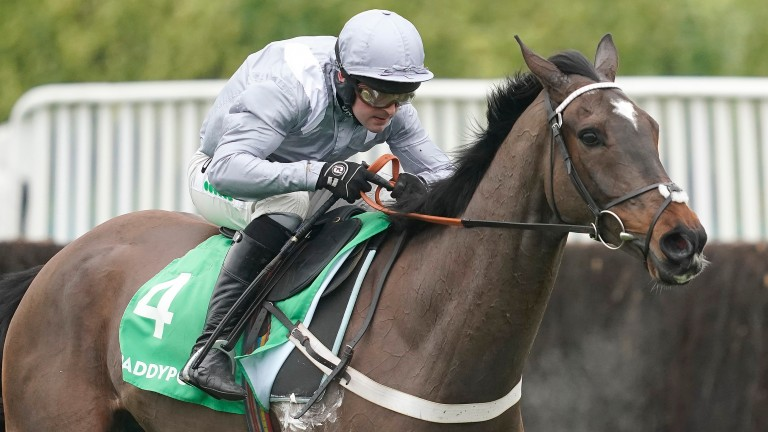 Santini: will be partnered by Aidan Coleman for the first time in the Cotswold Chase