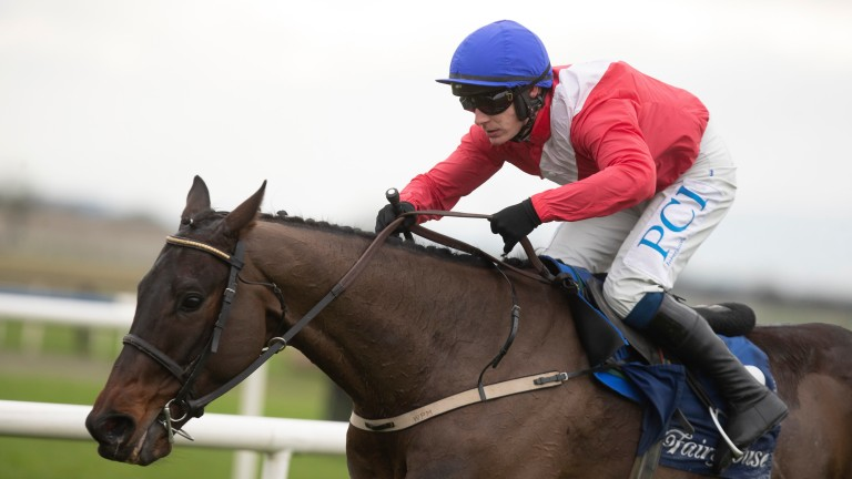 Allaho cruises to an easy success in the beginners' chase at Fairyhouse