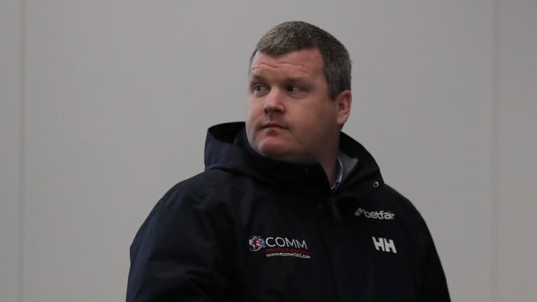 Gordon Elliott: has entered 59 horses across Cheltenham's nine handicaps