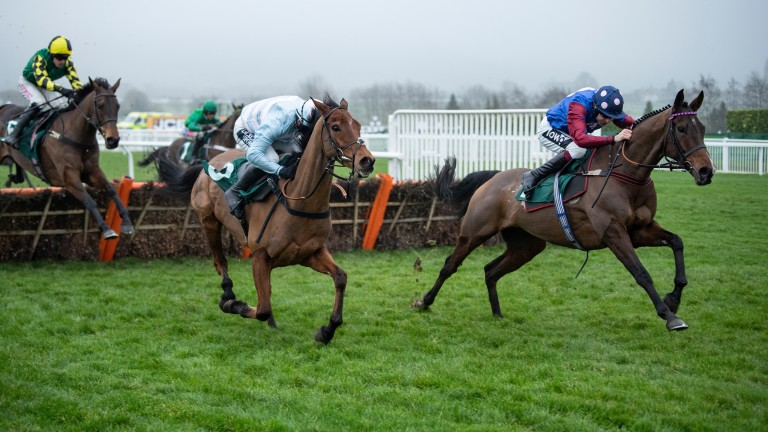 Paisley Park (right), Summerville Boy (light colours) and Lisnagar Oscar (left) face each other again after doing battle in the Cleeve Hurdle in January