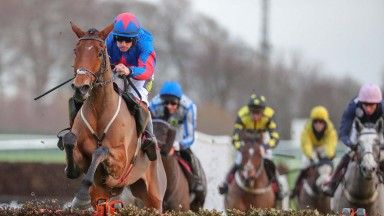 The Hollow Ginge : on Grand National trail Photograph by Grossick Racing Photography 0771 046 1723