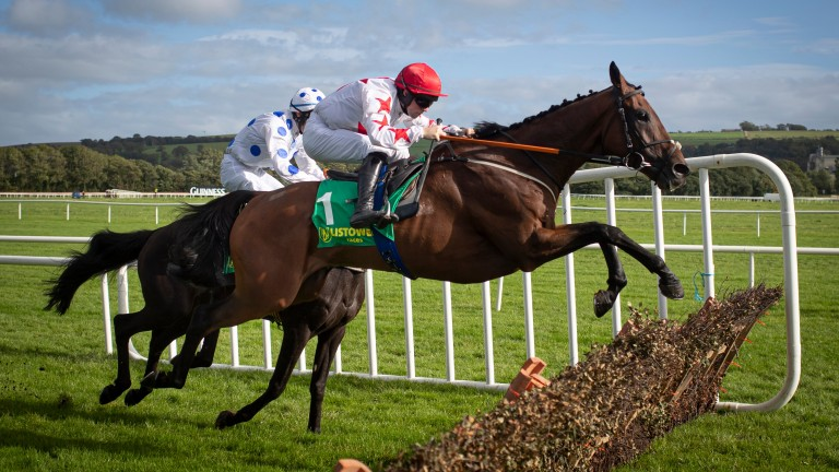 Darver Star: will be bidding to cause an upset at Leopardstown on Saturday