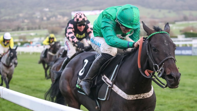 Call Me Lord: won the International Hurdle at Cheltenham last season