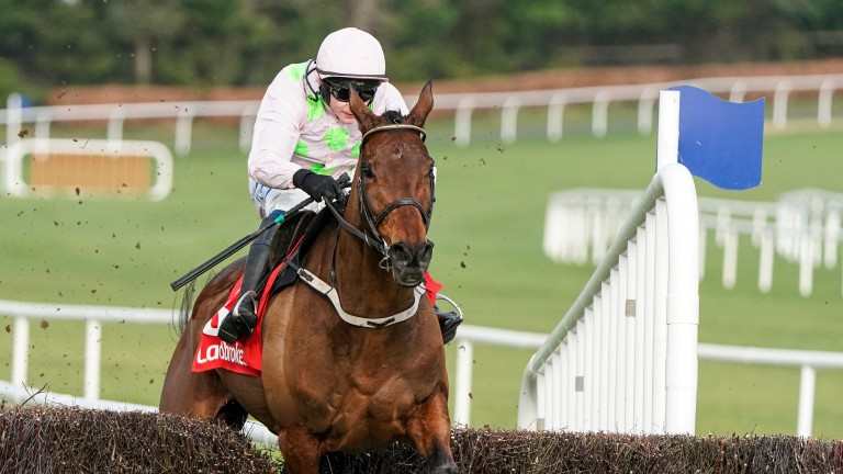 Chacun Pour Soi: Champion Chase contender was a good winner at the Dublin Racing Festival