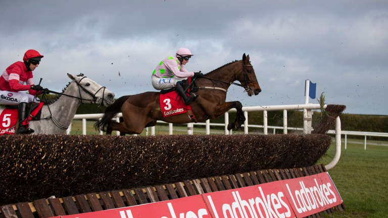 Chacun Pour Soi can give Willie Mullins another victory in the Hilly Way Chase