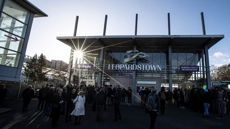 Leopardstown: attracted its best attendance figure yet across the two-day Dublin Racing Festival